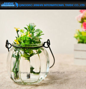 Pumpkin Glass Flower Plant Vase with Easy Hanging Holder pictures & photos