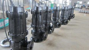 Sewage Pump (WQ with CE, good quality) pictures & photos