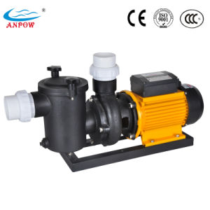 China High Efficiency And Energy Saved Swimming Pool Pumps Ccpb30 China Swimming Pool Pump