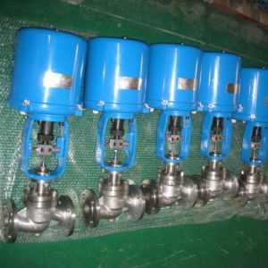 Electric Globe Type Single-Seat Control Valve pictures & photos