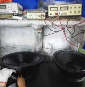 "15 ""Subwoofer PRO Audio Stable Speaker Ferrite Falante Profissional 550W pictures & photos"