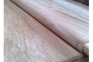 Natural 0.18mm Pencil Cedar Veneer