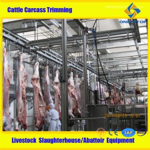 Cattle Slaughterhouse Equipment Cattle Slaughter Equipment pictures & photos