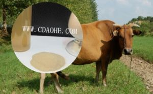 Iron Amino Acid Feed Additive on Poultry pictures & photos