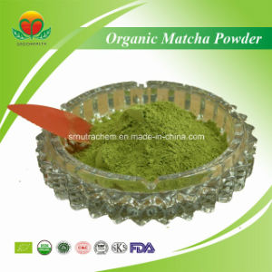 Manufacture Supplier Organic Matcha Powder pictures & photos