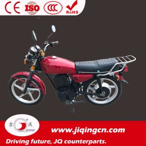 2000W-3000W Electric Motorcycle, Electric Bike (Juguar) -Slope Climbing Ebike pictures & photos