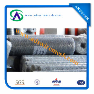 Chicken Hexagonal Wire Netting (ISO9001) pictures & photos