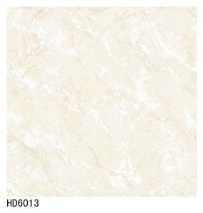 Made in China Soluble Salt Porcelain Tile 600X600 800X800 pictures & photos