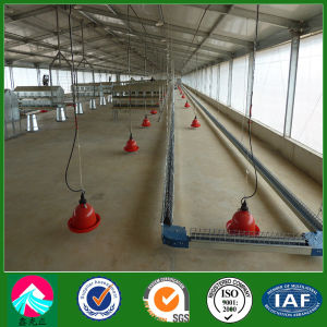 Light Steel Structure Poultry House (XGZ-pH 032) pictures & photos