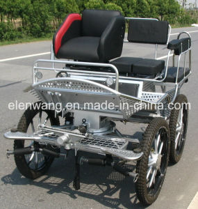 Marathon Horse Carriage Horse Cart with Stainless Steel Body (GW-HC012-9#) pictures & photos