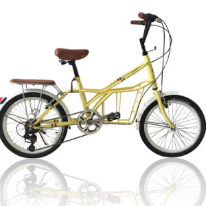 Popular Carbon Steel Frame Kids/Student/Adult Bike (NB-009) pictures & photos