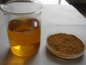 Natural Oleanolic Acid Extract / Olea Europaea Extract pictures & photos