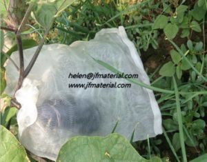 Anti Insect Net Bag Plastic Net Bag pictures & photos