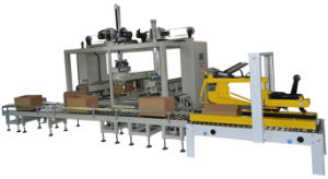 Carton Filling and Sealing Machine pictures & photos