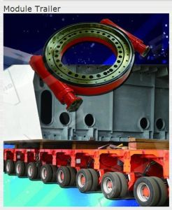 Slewing Drives Used for Module Trailer (14 Inch) Truck Crane Engineering Machinery pictures & photos
