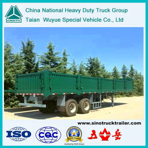 40′platform Semi-Trailer with Side Wall Pane (TAZ9250)