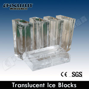 Containerized Brine System Block Ice Machine (FIB-100BC) pictures & photos