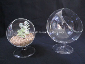 Glass Vase for Table Decoration or Candle pictures & photos