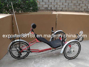 Top Level Quality Recumbent Tricycle for Tourist pictures & photos