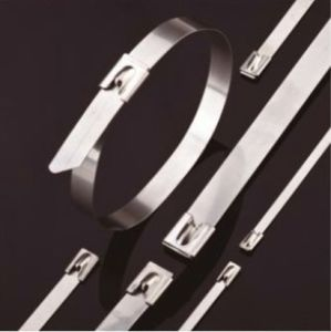 Dnv ABS Roller Ball 304 316 Stainless Steel Cable Ties pictures & photos