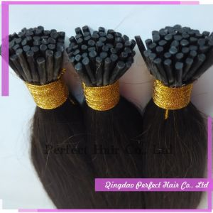 Factory Direct Sell 100 Human Hair Weave with Colored Tip pictures & photos