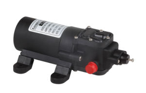 Compact Agricultural 12V/24V Diaphragm Pump(With Eduction Valve) pictures & photos