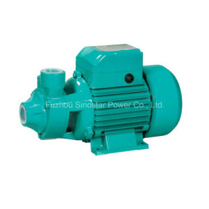 Qb60 0.5HP High Quality Peripheral Pump for Home Use pictures & photos