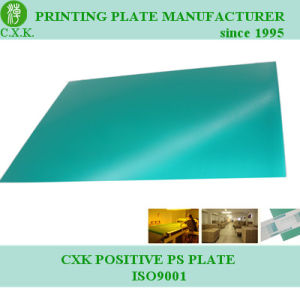 China Manufacturer Good Quality Positive PS Printing Plate (M-28) pictures & photos