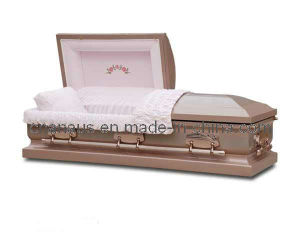 US Style Stainless Steel Casket (15H5030) pictures & photos