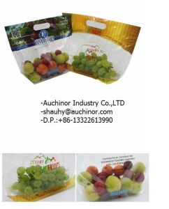 New Punching Grape Protection Packaging Bag with Customized Printing pictures & photos