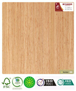 Red Oak Veneer