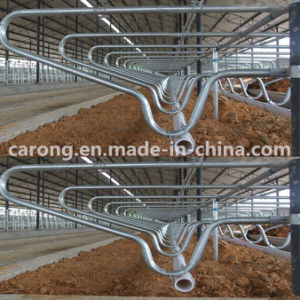 Cattle Farm Equipment Cow Galuanised Steel Flexible Free Stall pictures & photos