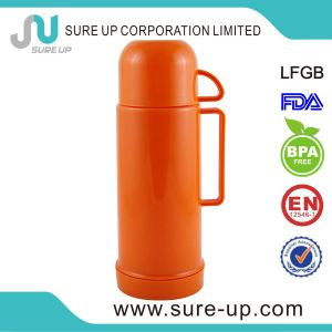 Pretty Design Insulated Water Bottle (FGUP) pictures & photos