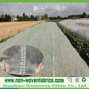 3% UV Treated Nonwoven Fabric for Agriculture pictures & photos