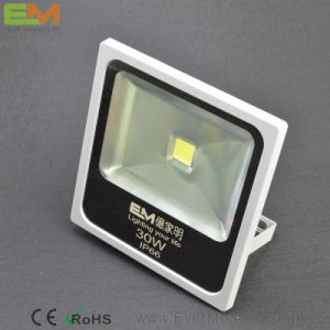 30W IP65 Waterproof CE Certified LED Floodlight