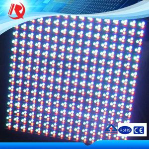 P10 RGB Full Color DIP Outdoor LED Display Module pictures & photos