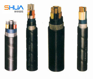 Heat-Resistant Control Cable with Fluoroplastics Insulation&PVC Sheath pictures & photos