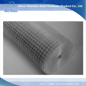 Electro Galvanized Welded Wire Mesh pictures & photos
