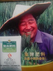 Large Quantity NPK Fertilizer for Plants