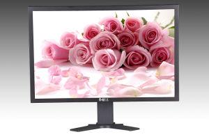 2013 IPS Monitor/LCD Monitor
