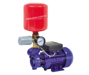 Superior Quality Db Series Automatic Water Pumps pictures & photos