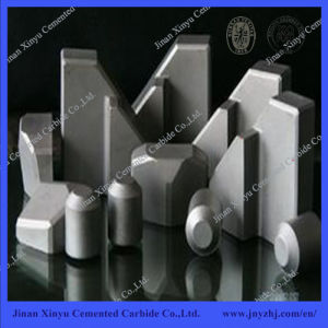 Tungsten Carbide Shield Cutter Inserts for Tbm pictures & photos