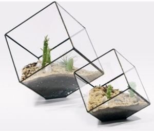 Glass Flowerpots for Home Garden Wedding Decoration pictures & photos
