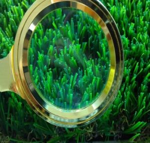 Monofilament Artificial Grass Victoria-45 pictures & photos