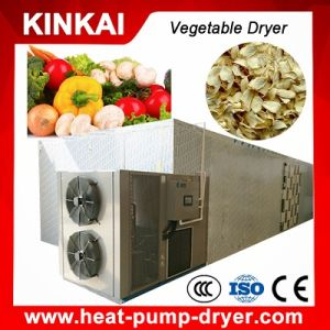 New Designed Batch Type Vegetable Dryer pictures & photos