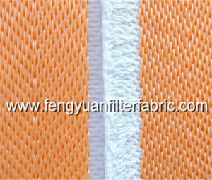 Desulfurization Filter Cloth pictures & photos