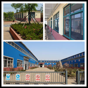 Good Price Manufacturer Ferrous Sulphate 98%Min pictures & photos