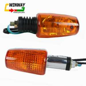 Ww-7148, Ybr125, Motorcycle Turnning Light, Winker Light, 12V pictures & photos