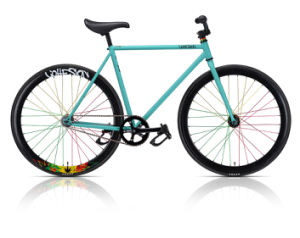 700c Single Speed Fixed Gear Bicycle (accept OEM service)
