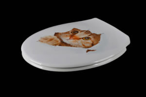 Novelty Printed Quick Release Soft Close Bathroom Decorative Toilet Lid pictures & photos